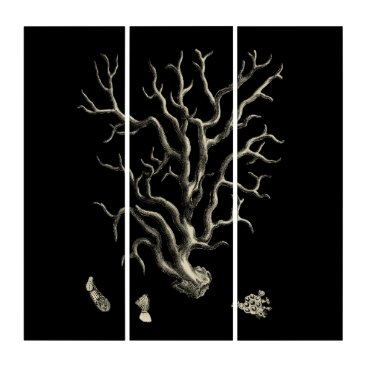 Beach Themed Black and Tan Coral Triptych