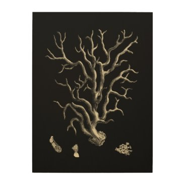 Beach Themed Black and Tan Coral Wood Wall Art