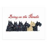 Black and Wheaten Scottish Terriers Postcard