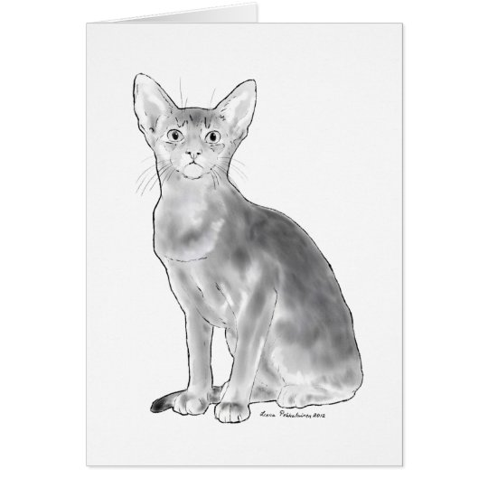 Black and White Abyssinian Card