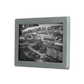 Black and white aerial view of city belt buckles