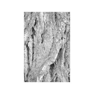 Black and White Aged Bark Canvas Print