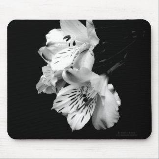 Black and White Alstroemeria Lily Mousepad