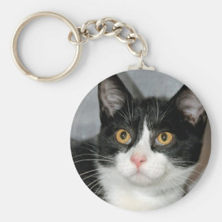 Black and White American Shorthair Cat Keychain