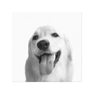 Black and white animal dog pet photo canvas print