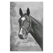 Black and White Antique Vintage Horse Illustration Tissue Paper