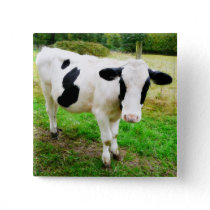 Black and White Apostrophe S Cow Button