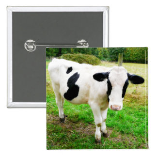 Black and White Apostrophe S Cow Pinback Buttons