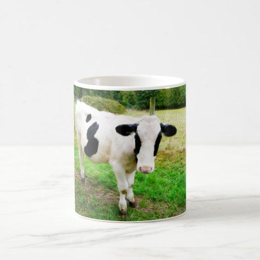 Black and White Apostrophe S Cow Mug