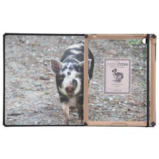 Black and White Baby Pig iPad Folio Case