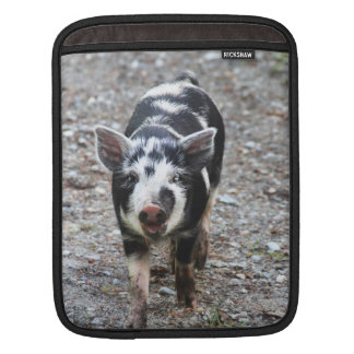 Black and White Baby Pig iPad Sleeve