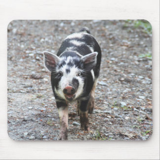Black and White Baby Pig Mouse Pad