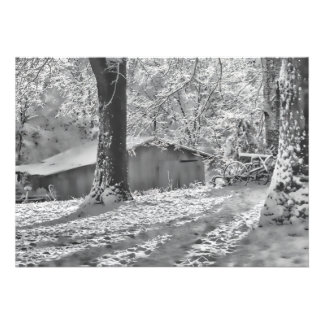 Black and White Backlit Rural Snow Scene Custom Invites