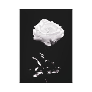 Black and White Beautiful Rose Close-up Canvas Print