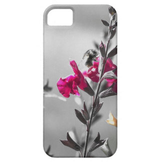 Black and White Bee iPhone SE/5/5s Case
