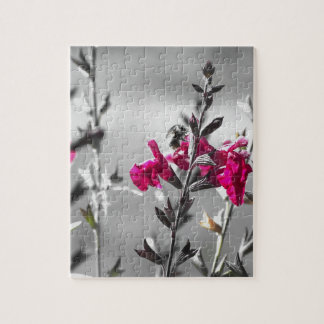 Black and White Bee Jigsaw Puzzle