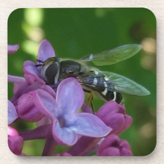 Black and White Bee Polinating Purple Lilacs Drink Coaster