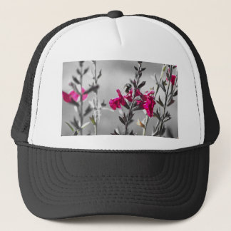 Black and White Bee Trucker Hat