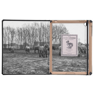Black and White Belgian Horses In A Pasture Cases For iPad