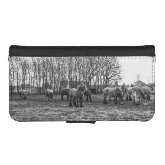 Black and White Belgian Horses In A Pasture Phone Wallet