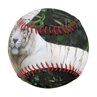 Black and White Bengal Tiger relaxed and smiling Baseball