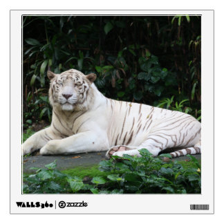 Black and White Bengal Tiger relaxed and smiling Wall Decal