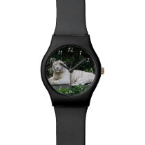 Black and White Bengal Tiger relaxed and smiling Wrist Watch