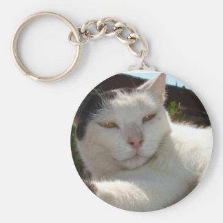 Black and White Bicolor Cat Lounging on A Park Ben Keychain