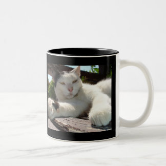 Black and White Bicolor Cat Lounging on A Park Ben Two-Tone Coffee Mug