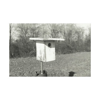 Black and White Birdhouse on Canvas