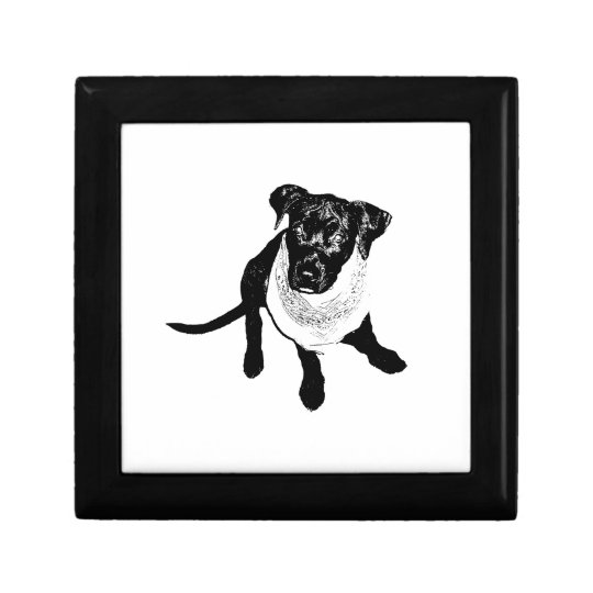 Black and White Black Lab Puppy image Gift Box