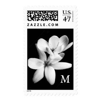 Black and White Blossom Monogram Initial Stamp