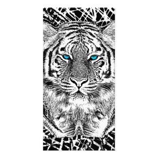 Black And White Blue Eyes Tiger Graphic Card