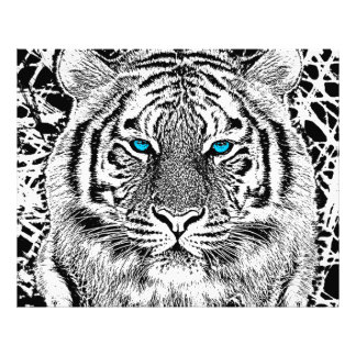 Black And White Blue Eyes Tiger Graphic Photo Print
