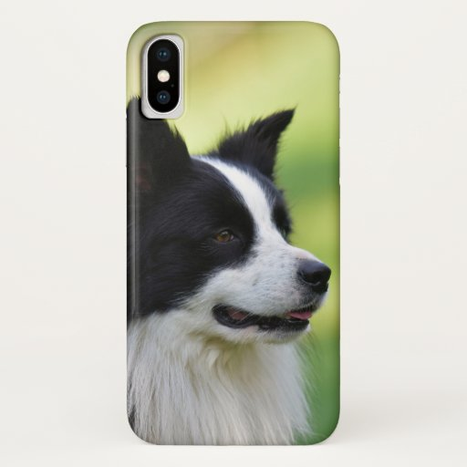 Black and White Border Collie Dog iPhone X Case