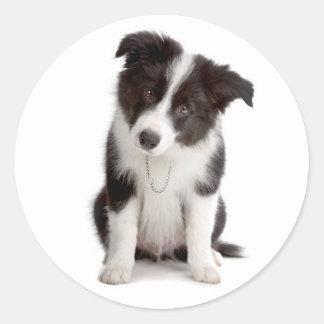 Black And White Border Collie Puppy Dog Classic Round Sticker