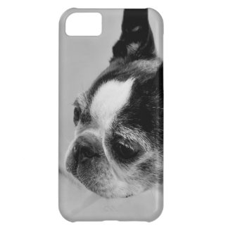 Black and White Boston Terrier iphone 5 Case