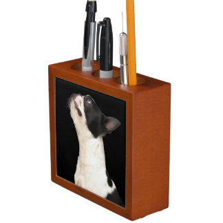 Black and white Boston Terrier looking up Desk Organizer