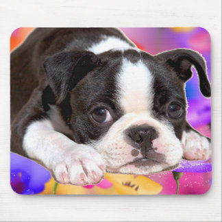 Black and White Boston Terrier Mousepad
