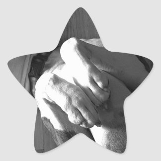 Black and White Boxer Love Star Sticker