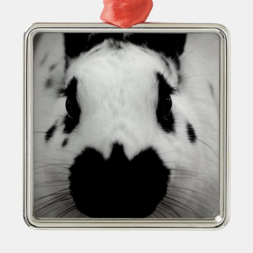 Black And White Bunny Metal Ornament