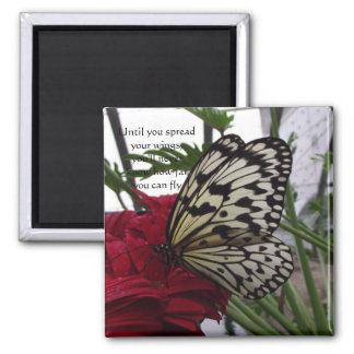 Black and white butterfly 2 inch square magnet
