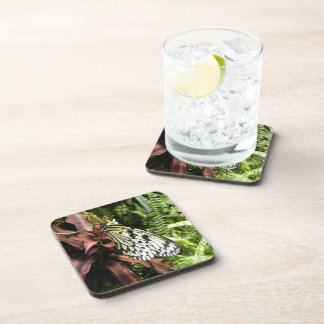 Black and White Butterfly Beverage Coaster