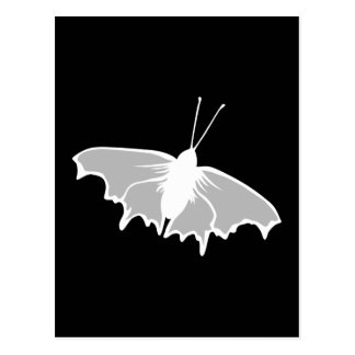 Black and White Butterfly Design. Postcard