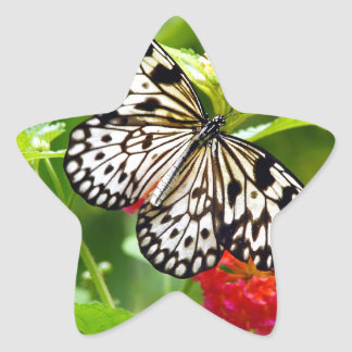 Black and white butterfly in garden print star sticker