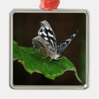 Black and White Butterfly Metal Ornament