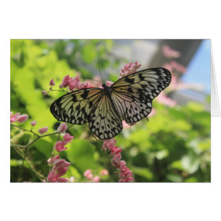 Black And White Butterfly On Pink Flower Card