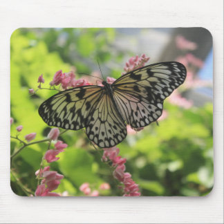 Black And White Butterfly On Pink Flower Mouse Pad