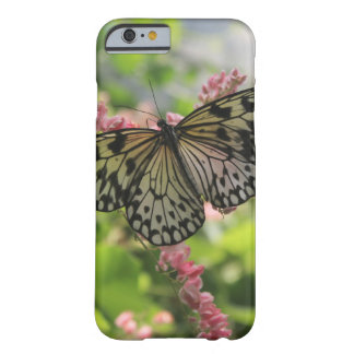 Black And White Butterfly On Pink Flowers Barely There iPhone 6 Case