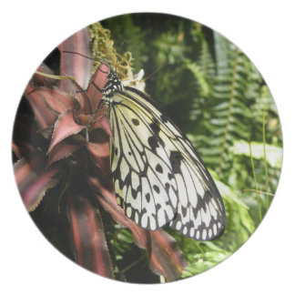 Black and White Butterfly Plate